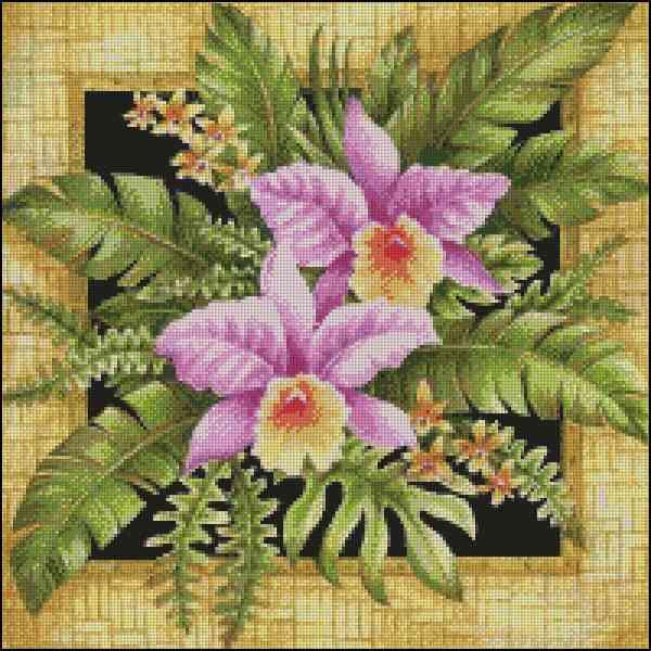 Орхидеи в рамке - А