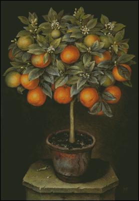 Красивое апельсиновое дерево схема вышивки крестом