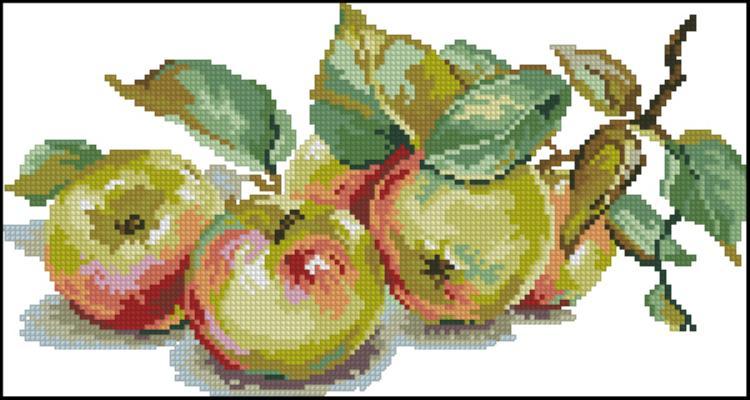 Схема вышивки яблоки лука