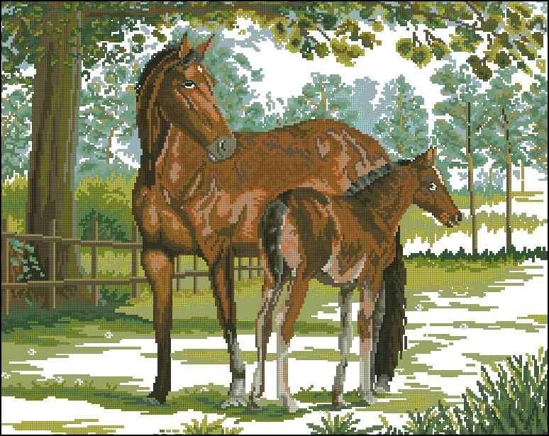 вышивки бесплатно лошади схема